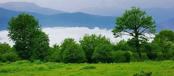 جنگل الیمستان، زمردی درخشان در قلب مازندران