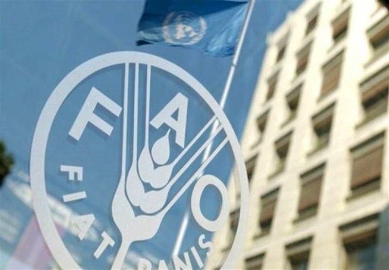 کمک کرونایی صندوق بین المللی پول به تاجیکستان