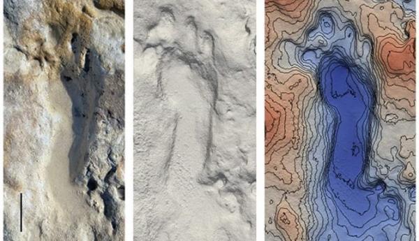 کشف رد پا فسیل شده 100 هزار ساله در اسپانیا