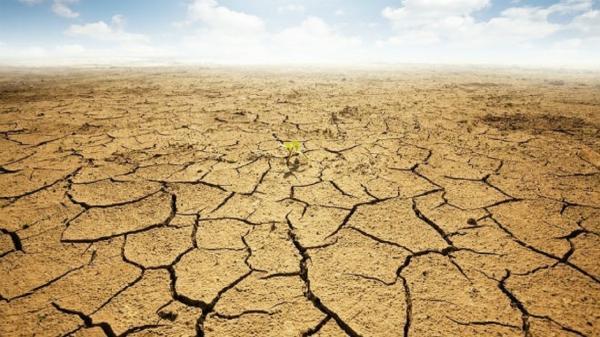 خسارت 670 میلیارد تومانی بلایای طبیعی در هشترود